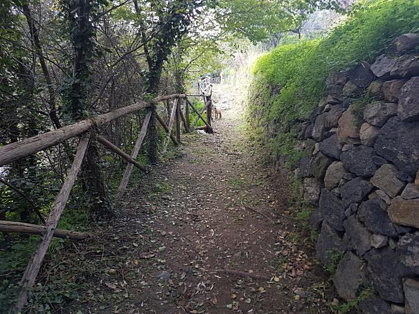 gurne dell'alcantara percorso a piedi foto taobook
