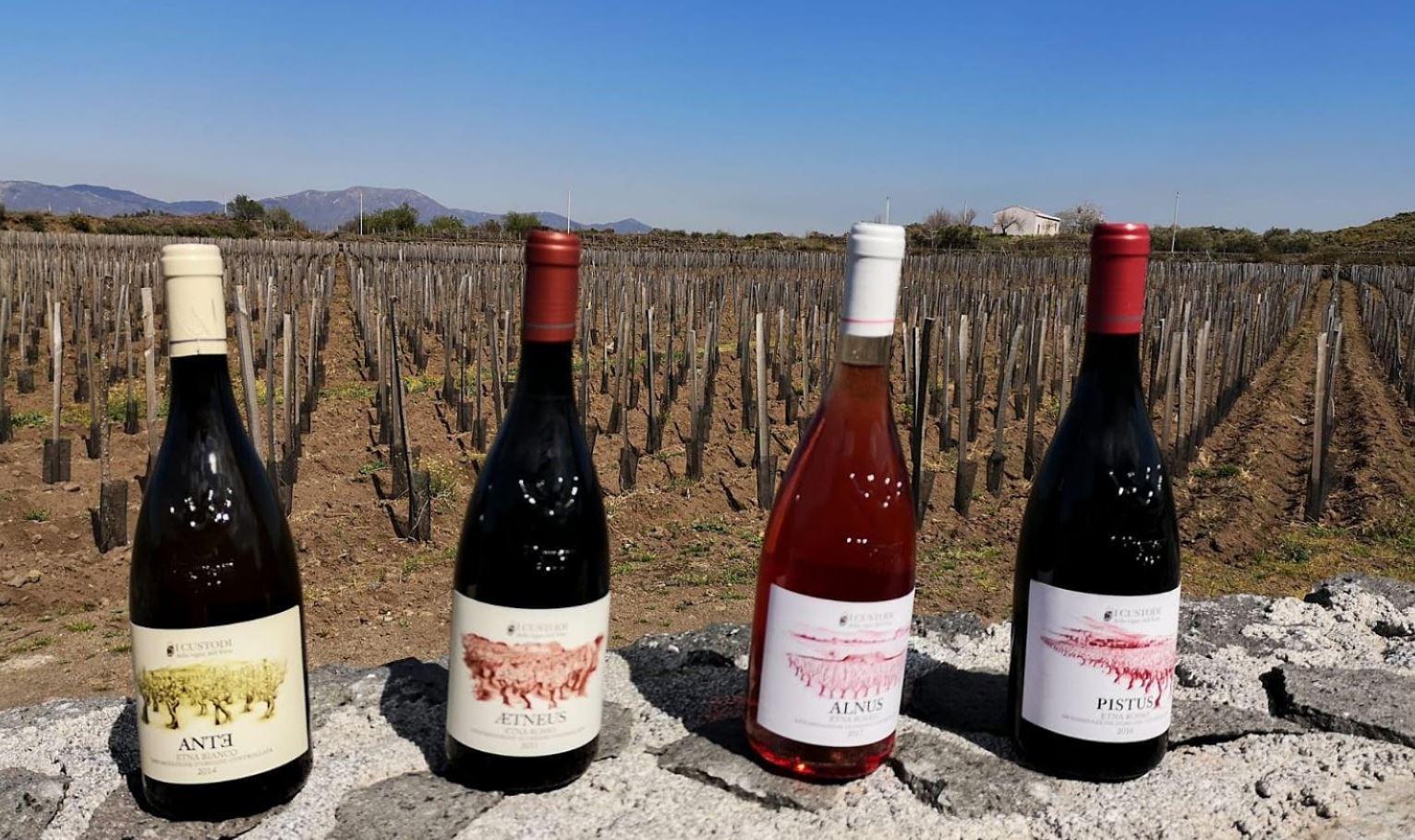 cantina i custodi dell'etna vini doc