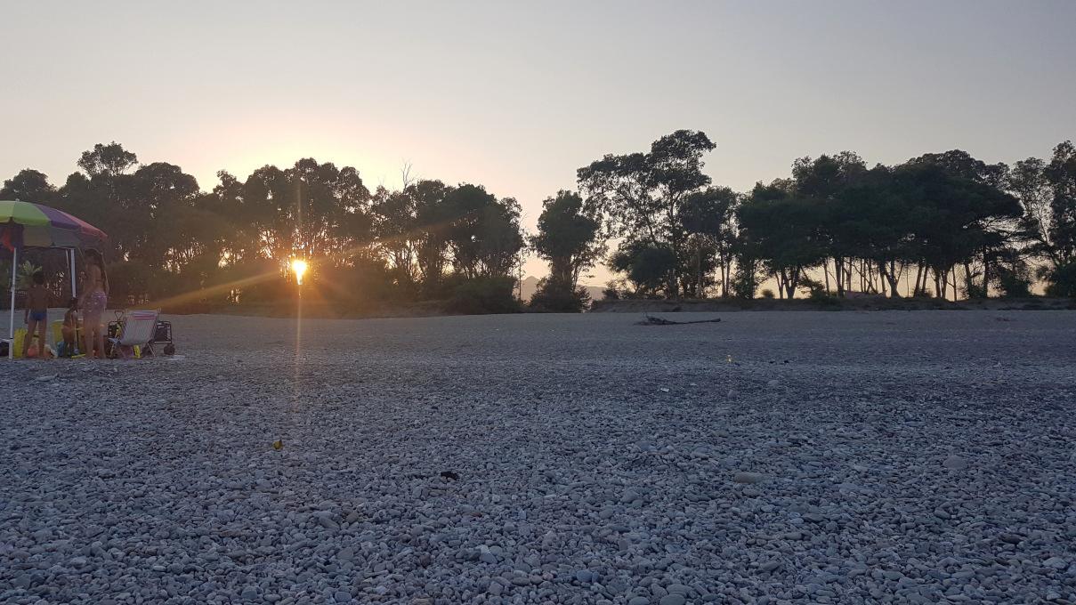 eucaliptus nella spiaggia di calatabiano